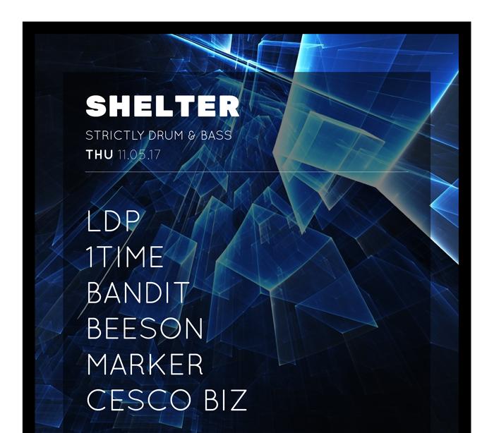 Shelter Event Poster